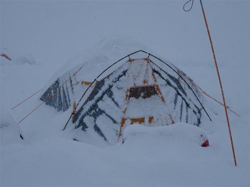 Ingesneeuwde tent op Denali, kamp 1 2300 meter