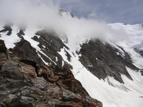 Beklimming Mont Blanc via de Gouter route